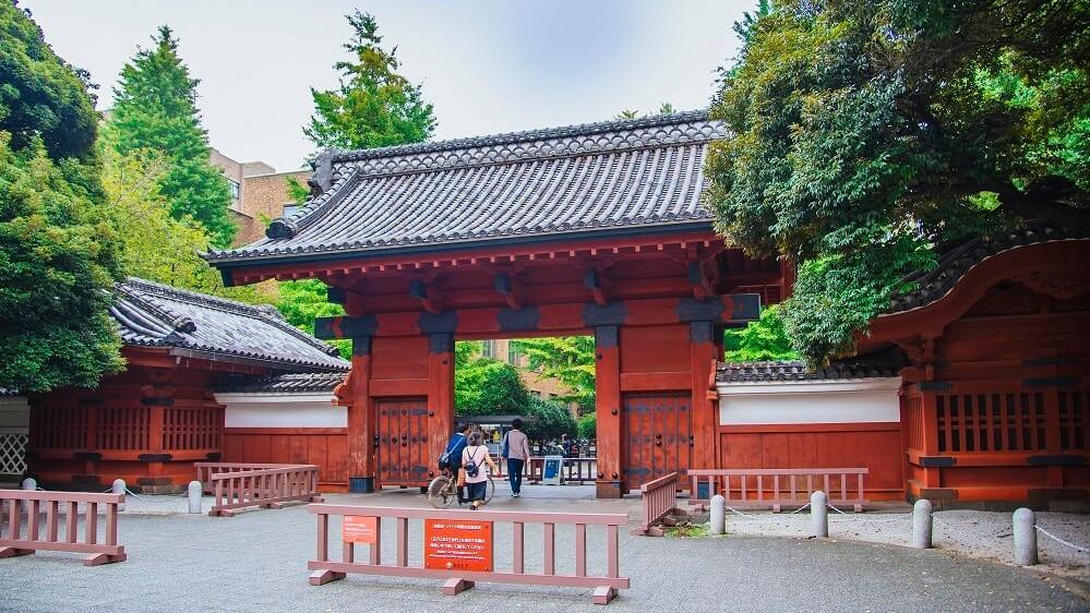 東京大学推薦入試対策プラン